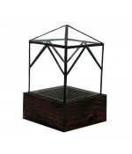 The Ellias Trap Recycled Glass Terrarium